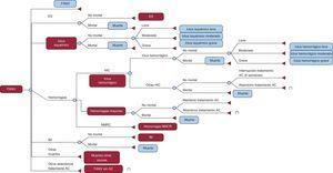 Modelo económico de Markov de la prevención del ictus en pacientes con fibrilación auricular no valvular. Evolución del paciente con fibrilación auricular no valvular. Los pacientes que pasan al estado fibrilación auricular no valvular sin anticoagulante, regresan a fibrilación auricular no valvular. Los pacientes que pasan a los estados infarto de miocardio o embolia sistémica pueden morir a posteriori a consecuencia de esas complicaciones. AC: anticoagulante; ES: embolia sistémica; FANV: fibrilación auricular no valvular; HIC: hemorragia intracraneal; IM: infarto de miocardio; NMCR: no mayores clínicamente relevantes. *Cambio de tratamiento a ácido acetilsalicílico.