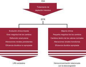 Diagnóstico diferencial del empeoramiento de la función renal en la insuficiencia cardiaca aguda. EFR: empeoramiento de la función renal; ICA: insuficiencia cardiaca aguda; LRA: lesión renal aguda.