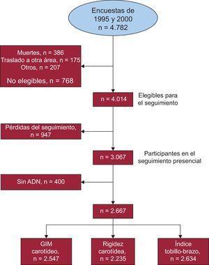Diagrama de flujo en el que se muestra el proceso de selección de los participantes en este estudio.