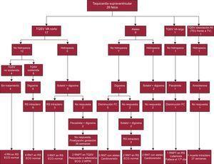 Evolución y tratamiento de las taquicardias fetales. AV: atrioventricular; ECG: electrocardiograma; FC: frecuencia cardiaca; RN: recién nacido; RNPT: recién nacido pretérmino; RNT: recién nacido a término; RS: ritmo sinusal; TEU: taquicardia ectópica de la unión; TQSV: taquicardia supraventricular; TV: taquicardia ventricular; VA: ventriculoatrial; WPW, síndrome de Wolff–Parkinson–White.