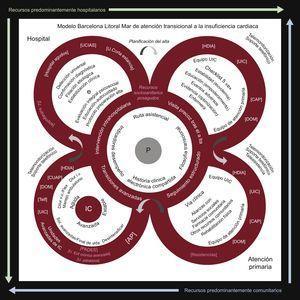 Modelo Barcelona Litoral Mar de atención transicional a la insuficiencia cardiaca. El círculo central representa el sustrato necesario para el desarrollo del modelo con el paciente y el profesional en el centro (P). La filosofía transicional implica una atención integral, colaborativa, precoz, basada en la continuidad, estructurada, planificada y que prevea acciones en caso de contingencia. El contenido de los círculos incluye las acciones que realizar; en los bordes se especifican los dispositivos asistenciales idóneos (en rosa, los recursos sociosanitarios). AP:atención primaria; CAP:centro de atención primaria; CUAP:centros de urgencias de atención primaria; Diur: diuréticos; DOM:domicilio; e:enfermería; Flex:régimen flexible; HDIA:hospital de día; IC:insuficiencia cardiaca; i.v.: intravenosos; PADES:programa de atención domiciliaria y equipos de soporte; Sol.:soluciones; Telf:seguimiento telefónico; U.: unidad; UCIAS: urgencias; UIC:unidad de insuficiencia cardiaca; v.o.:por vía oral. Esta figura se muestra a todo color solo en la versión electrónica del artículo.