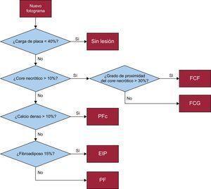 Determinación de fenotipos de segmentos arteriales. EIP:engrosamiento intimal patológico; FCF:fibroateroma de capa fina; FCG:fibroateroma de capa gruesa; PF:placa fibrosa; PFc:placa fibrocalcificada.