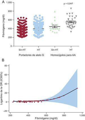 A: concentración de fibrinógeno en los pacientes hipertensos según el polimorfismo rs180070, presentados como media ± desviación estándar. B:logaritmo de la OR de la enfermedad coronaria según la concentración de fibrinógeno en los pacientes hipertensos. HT:hipertensión; IC95%:intervalo de confianza del 95%; OR: odds ratio.