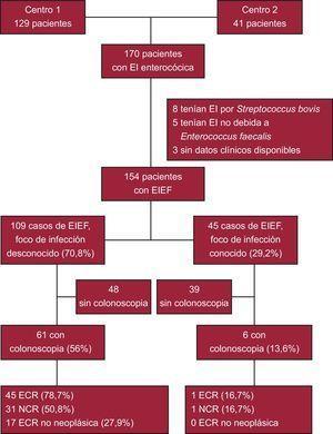 Diagrama de flujo de la distribución de los pacientes. ECR:enfermedad colorrectal; EI:endocarditis infecciosa; EIEF:endocarditis infecciosa por Enterococcus faecalis; NCR:neoplasia colorrectal.