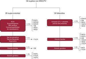 Algoritmo diagnóstico ante un caso de MSC, tanto en supervivientes como en fallecidos. DAVD: displasia arritmogénica de ventrículo derecho; ECG: electrocardiograma; FV: fibrilación ventricular; MCD: miocardiopatía dilatada; MCH: miocardiopatía hipertrófica; MCNC: miocardiopatía no compactada; MSC: muerte súbita cardiaca; RM: resonancia magnética; SB: síndrome de Brugada; SQTC: síndrome de QT corto; SQTL: síndrome de QT largo; TVPC: taquicardia ventricular polimórfica catecolaminérgica.