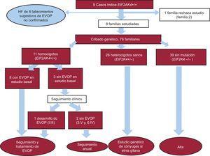 Diagrama resumen del estudio familiar. EIF2AK4+/+: homocigoto; EIF2AK4 +/–: heterocigoto; EIF2AK4 –/–: no portador; EVOP: enfermedad venooclusiva pulmonar; HF: historia familiar positiva para EVOP.