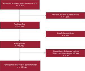 Diagrama de flujo de los participantes incluidos en el estudio. ECV: enfermedad cardiovascular.