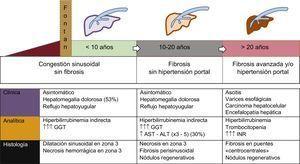 Historia natural de la enfermedad hepática relacionada con la cirugía de Fontan. La secuencia temporal es orientativa, ya que la cronología depende de la evolución de la cardiopatía. Las arritmias o la disfunción ventricular pueden acelerar la evolución. ALT:alanina transaminasa; AST:aspartato aminotransferasa; GGT:gamma-glutamil transpeptidasa. Esta figura se muestra a todo color solo en la versión electrónica del artículo.