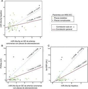 Correlaciones entre cantidad de miR-34a-5p en muestras de GE y hepáticas y entre cada uno de ellos y la PCRas de los pacientes con MSC-EC (n = 78). La GE se obtuvo de arterias coronarias con EC. A: correlación entre los valores de miR-34a-5p en la GE y el hígado. B: correlación entre los valores de miR-34a-5p en la GE y la PCRas. C: correlación entre los valores de miR-34a-5p hepáticos y la PCRas. EC: enfermedad coronaria; GE: grasa epicárdica; MSC: muerte súbita cardiaca; PCRas: proteína C reactiva de alta sensibilidad. La significación estadística (p < 0,05) se evaluó mediante correlaciones de Pearson.