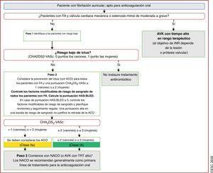 «A»: anticoagulación/prevención del ictus; la vía <span class=