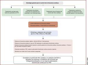 Estrategia general para el control de la frecuencia cardiaca490. BV: biventricular; <span class=