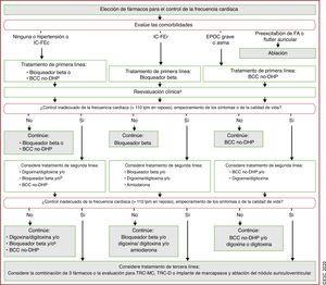Elección de fármacos para el control de la frecuencia cardiaca490. <span class=