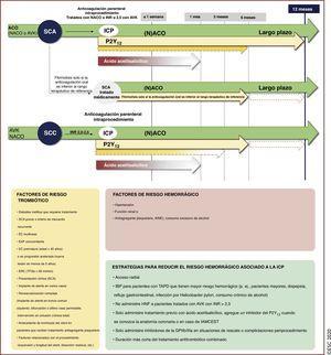 Tratamiento posprocedimiento de los pacientes con FA y <span class=