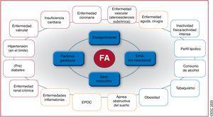 Resumen de los factores de riesgo para la aparición de FA10,22,33,35–72 (véase la lista completa en la tabla 1 del material adicional). <span class=