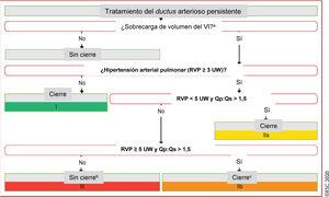 Tratamiento del ductus arterioso persistente. <span class=
