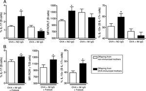 In vitro induction of IL-17 and the effect of maternal IgG. Splenocytes of offspring derived from immunized or non-immunized mothers were cultured (n=10 on each group) for 7 days with 20μg/mL OVA and 100μg/mL purified IgG from non-immunized (NO IgG) or immunized mothers (IM IgG) and the percentage of intracellular IL-17, RORγT or co-production of IL-17 and IL-10 of offspring B cells was evaluated by flow cytometry (A). We also evaluated the same flow cytometry parameters adding 10μg/mL of FcγRII/III-blocking Ab in cultures with OVA and IM IgG (B). Bars represent the mean±standard error. *P≤0.05 compared with the offspring of the respective non-immunized mothers.