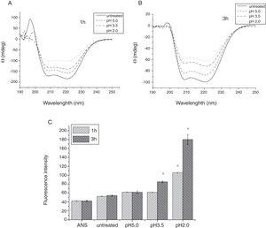 Conformational changes of Cra g 1 before and after acid treatment. (A) CD spectra of Cra g 1 treated with acid for 1h at different pH; (B) CD spectra of Cra g 1 treated with acid for 3h at different pH; (C) ANS-binding fluorescence of Cra g 1 treated at different pH and time. *P<0.05 vs. untreated protein. All data are presented as the mean±SD (n=3).