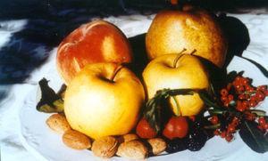 Alimentos vegetales incluidos en el síndrome de reactividad cruzada pólenes-frutas.