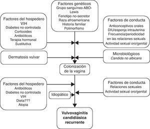 Patogenia de las VVCR27.