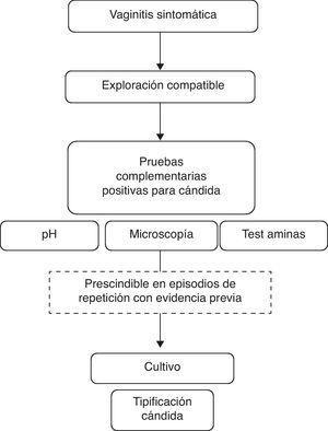 Algoritmo diagnóstico de las VVCR (adaptado de Sobel27).