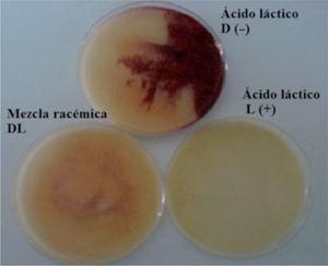 Diferentes isómeros del ácido láctico producidos por bacterias lácticas aisladas de masas de maíz artesanalmente fermentadas en Colombia.