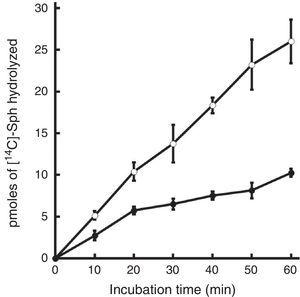 Time-course of mycobacterial SMase activity. Mycobacterial cell fractions (2μg of total protein) were tested for SMase activity at incubation time points between 0 and 60min. Symbols represent the mean±SE of [14C]-phosphorylcholine released by M. tuberculosis whole cell extracts of strains H37Rv (○) or CDC1551 (●) in three independent experiments performed in triplicate.