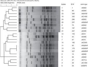 PFGE profiles of invasive Streptococcus dysgalactiae subsp. equisimilis (n=21). The strains were digested with the restriction enzyme SmaI.