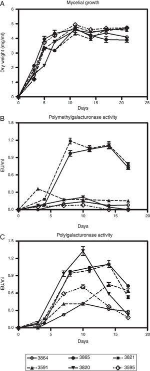 Kinetics of growth (A), polymethylgalacturonase (B) and polygalacturonase production (C) by M. phaseolina isolates from different regions in Argentina, in minimum salt medium supplemented with pectin and glutamic acid as carbon and nitrogen sources, respectively. Values represent the mean of three replicates and SEM.