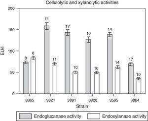 Time courses for the production of endoglucanase and endoxylanase activities by M. phaseolina isolates from different regions in Argentina, in minimum salt medium supplemented with carboxymethylcellulose (for cellulases) or xylan (for xylanases) as carbon sources and glutamic acid as nitrogen source. The numbers over the bars indicate the day when the highest value was obtained. Values represent the mean of three replicates and SEM.