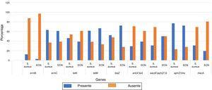 Distribución de 9 genes asociados a la resistencia a 4 grupos de antibióticos en cepas de S. aureus y de estafilococos coagulasa negativos (ECN).
