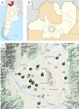 Ubicación geográfica de la Argentina (A) y la provincia de Salta (B); el círculo señala la ubicación del Valle de Lerma. Detalle del Valle de Lerma (C); los círculos señalan la ubicación de los tambos muestreados (enumerados del 1 al 16). El color del fondo del círculo denota el sistema productivo del establecimiento. ●: pastoreo a campo con suplementación (PcS); ●: free stall;○dry lot; □: tambos en donde fue posible muestrear cánidos; ?: tambos que comparten la misma acequia.