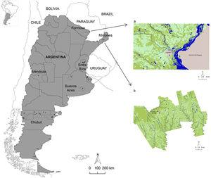 Geographic location of Argentina and the provinces analyzed. Distribution of hookworms (Ancylostoma duodenale/Necator americanus) in relation to the land use/cover classes of the study area in Formosa (a) and Misiones (b). Figure 1a shows the Clorinda city and surroundings (Formosa province), including Asunción del Paraguay city (Paraguay), using an unsupervised classification of Landsat 8 OLI image, and Figure 1b shows the Cainguás Department (Misiones province) using an unsupervised classification of Landsat 5 TM image. The land use/cover classes were: water (blue), arboreal-shrubby vegetation (dark green), vegetation of agropastoral use (light green) and urban area (gray). Note the presence of hookworms as black dots.