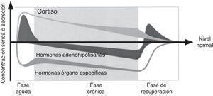 Concepto simplificado de los cambios dependientes de la hipófisis en el curso de la enfermedad crítica. Adaptado de van den Berghe et al.8.