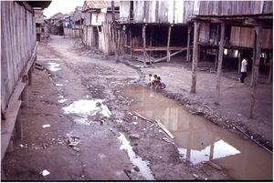 Non planned urbanization process in an indigenous village in the upper Solimões region, state of Amazonas (Kindly provided by Prof. Sinésio Talhari).