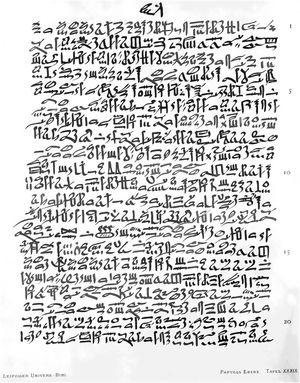 Ebers papyrus (1550 BC). Source: The Ebers papyrus – Wikimedia Commons.13