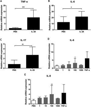 (A–C) IL-29 induced IL-6, IL-17 and TNF-α mRNA expression in PBMCs from PV patients. PBMCs obtained from 10PV patients were treated with IL-29 100ng/mL or PBS for 6h. After that, mRNA expression of IL-6, IL-17 and TNF-α in PBMCs were measured by Real-time quantitative PCR. IL-29 obviously enhanced IL-6, IL-17 and TNF-α mRNA expression in PBMCs; p-values are based on t-test. n=10, *p<0.05, **p<0.01, compared with control group. (D–E) IL-29 enhanced IL-6 and IL-8 mRNA expression in HaCat cells. HaCaT cells were treated with recombinant IL-29 (1ng/mL, 10ng/mL, 100ng/mL, 1000ng/mL) or TNF-α (10ng/mL) for 2h. After that, mRNA expression of IL-6 and IL-8 in HaCat cells was measured by Real-time quantitative PCR. IL-29 obviously enhanced IL-6 and IL-8 mRNA in HaCat cells; p-values are based on the One-way analysis of variance. n=10, *p<0.05, **p<0.01, compared with control group. All data are expressed as mean±SD.