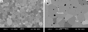 Microstructure of a sample sintered from Ta+2B mixture at 2200°C during 5min, heating rate of 100°C/min, mag. 1000× (a), 5000× (b).