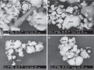 Backscattered SEM micrograph of 0.9PZN-0.1PT powders calcined at 1000°C for 4h in: (a) oxygen, (b) air, (c) argon and (d) nitrogen. The following phases were identified by EDS: perovskite (pero), pyrochlore (pyro) and ZnO.