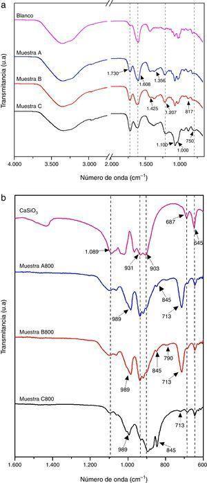 Espectros FTIR de las muestras A, B y C. a) Antes del tratamiento térmico. b) Después del tratamiento térmico a 800°C por 2h (muestras A800, B800 y C800).