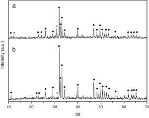XRD of HA sintered at 1230°C obtained by combustion in (a) aqueous media and (b) oxidizing media. Symbols (●) and (*) correspond to HA phase and β-TCP phase respectively.