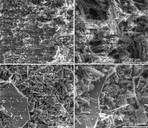 Micrografías MEB (×5.000) del revestimiento comercial en verde: a) 38%&#59; b) 42% de agua y después del tratamiento térmico&#59; c) 38%, y d) 42% de agua.