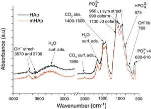 FT-IR spectra of HAp coating and modified HAp coating.