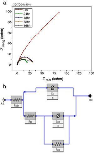 a) Diagrama de Nyquist para el sistema (10-70-20)-10% evaluado sobre el acero inoxidable 316L. b) Circuito equivalente del sistema a 168h.