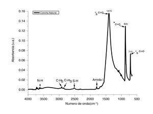 Espectro de infrarrojo correspondiente a los polvos obtenidos por molienda de conchas de ostión en estado natural.
