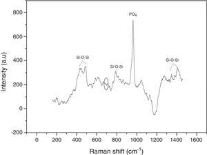 Raman spectrum of synthesized VC after 600°C heat treatment.