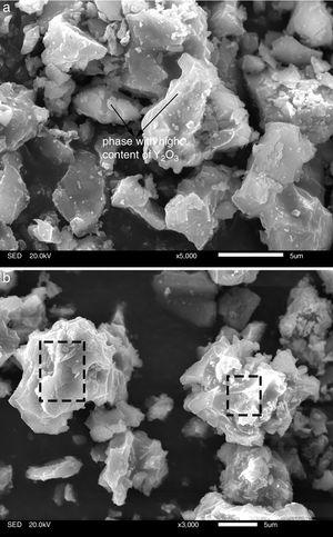SEM microphotographs of different regions of sample AY1 after fired at 1573K. (a) Region of new phase and (b) region of surface.