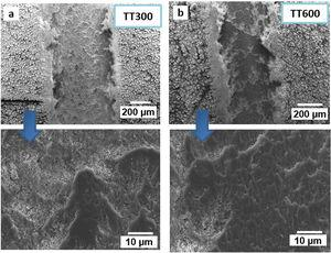 Morfología MEB de las huellas de desgaste los recubrimientos tratados a 650°C y ensayados a temperatura de: a)300°C; b)600°C.