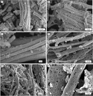 Imágenes SEM de fibras producidas y calcinadas a 1.000°C A), B) y C) fibras de CGO D), E) y F) fibras de LMO.