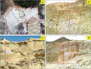 Outcrops of the studied deposits facies. (a) White halloysite deposit of the Neogene Melilla basin, (b) Gray yellow marly clay deposit of the Miocene Molay Rachid basin, (c) white, brownish or grayish diatomite deposit of the Neogene Boudinar basin, (d) pink-white silica sand deposit of Mechraa Hammadi.