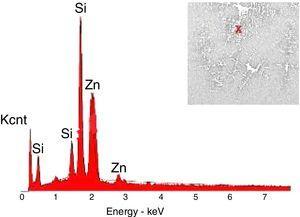 EDX analysis of G3PH2.